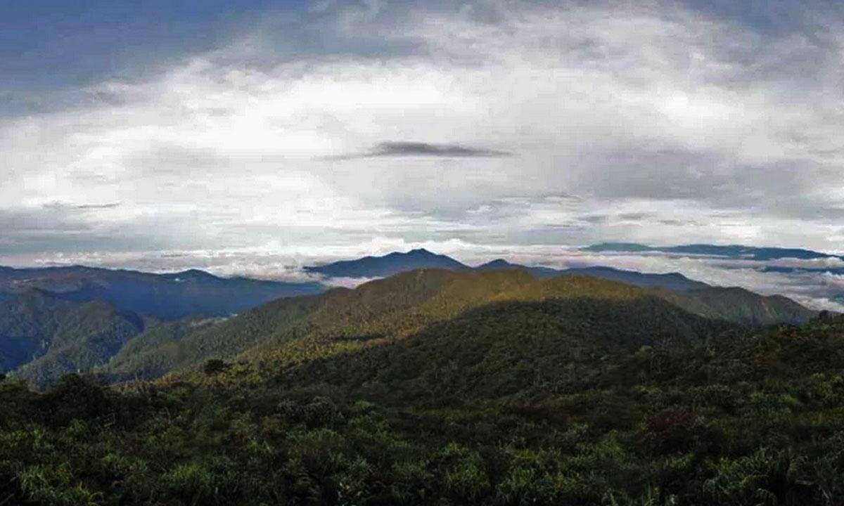 Leuser National Park Trekking