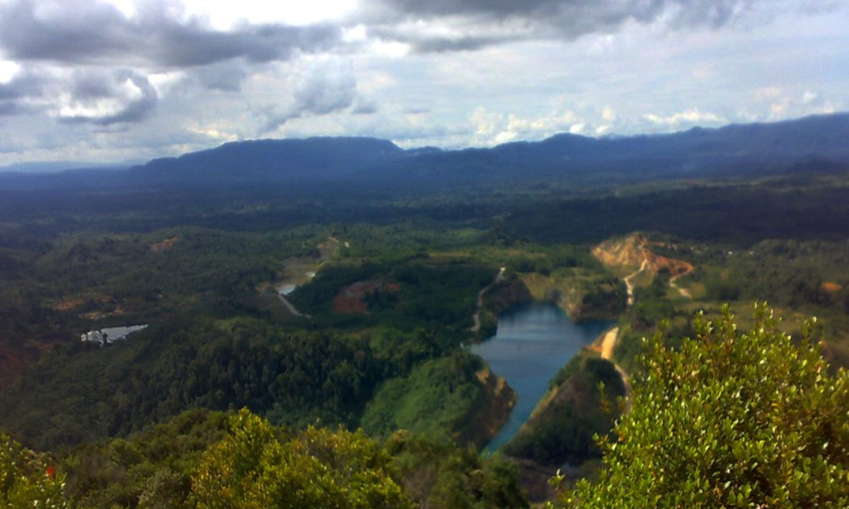 Gunung Palung National Park Exploration